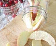 Home freeze dried apples