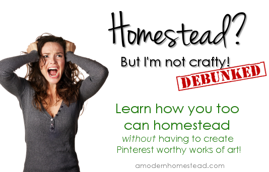 Learn how you too can homestead without having to create Pinterest worthy works of art!