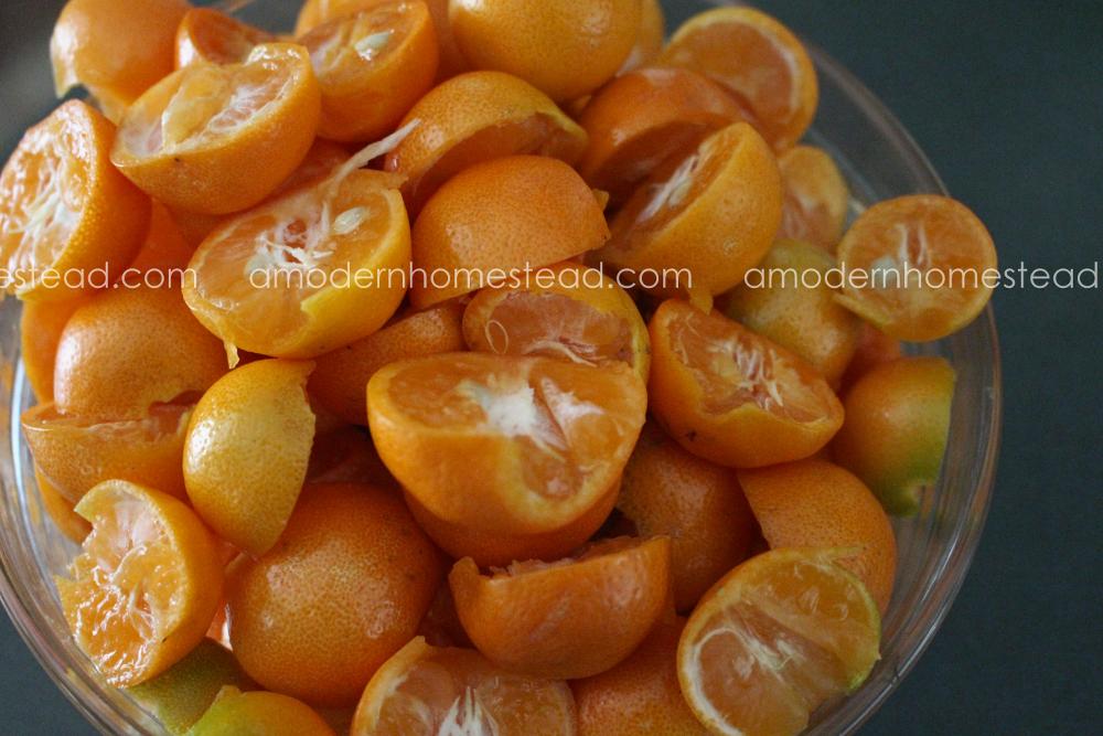 Candied Kumquats, Kumquat Jelly, Spiced Kumquats