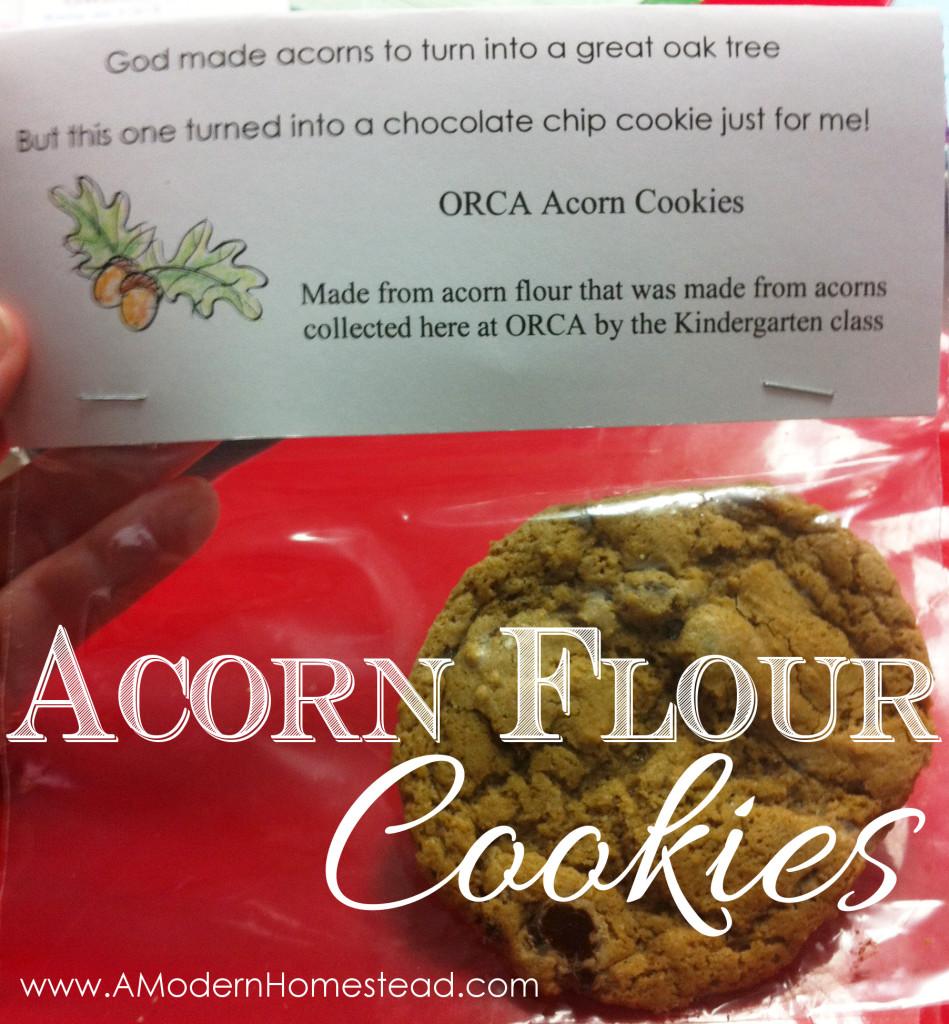 Acorn Flour Chocolate Chip Cookies