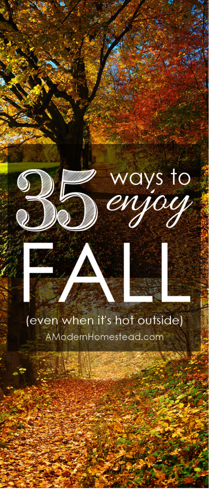 I love fall, but when it's still so hot outside, I find it difficult to get into the autumn mood. So I put together a list of things you can do to enjoy fall even when it's hot! Plus, most of them are completely free!