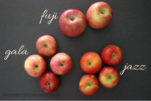 best apples for making homemade applesauce