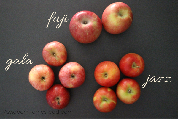 Best apple types for apple butter recipe
