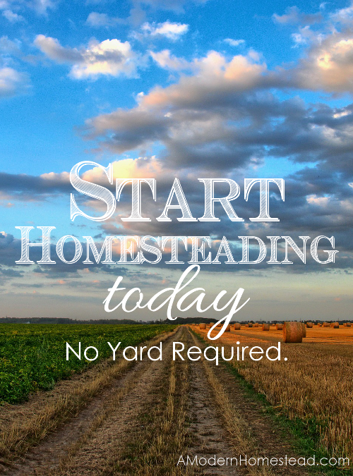 Start homesteading today no yard required for How to start homesteading today