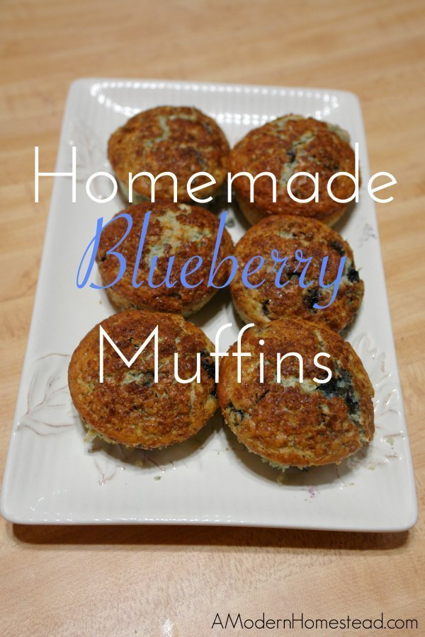 Easy homemade blueberry muffins! LOVE blueberry muffins, yum!