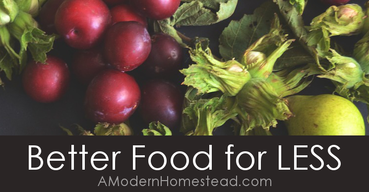 Make better food choices without spending a ton of money! How to eat better for less, good food without breaking the bank. I love these tips! They have seriously lowered our food bill by so much!!