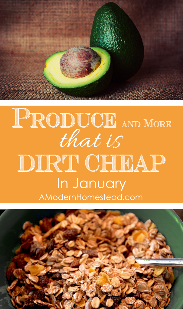 Make better food choices without spending a ton of money! How to eat better for less, good food without breaking the bank. I love these tips! They have seriously lowered our food bill by so much!! Food that is dirt cheap in January.