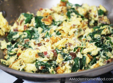 25 Ways to Eat Bacon and Eggs