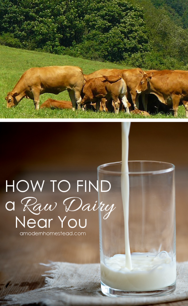 How to Find a Raw Dairy Near You. I wish I had know this months ago!!