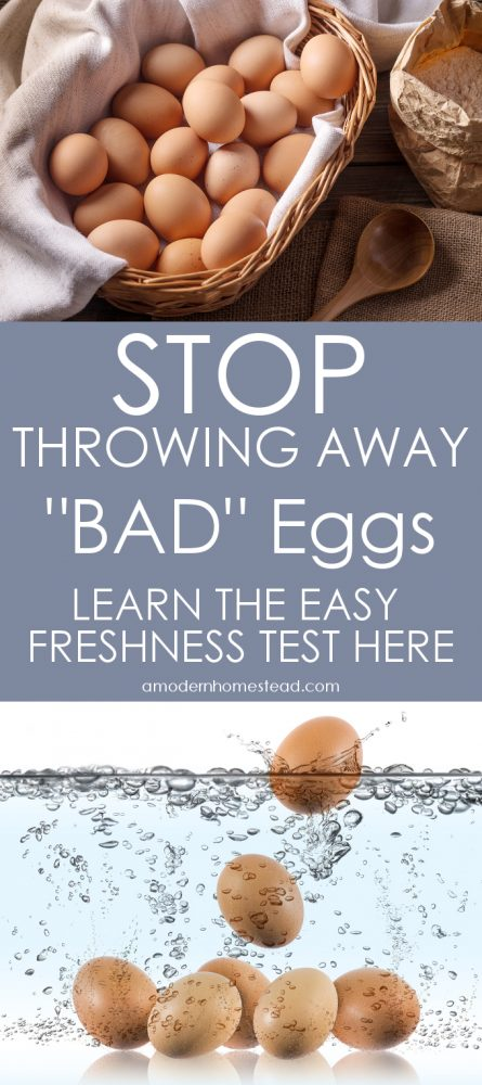 """Never throw away another """"BAD"""" egg! Learn the easy egg freshness test now!"""
