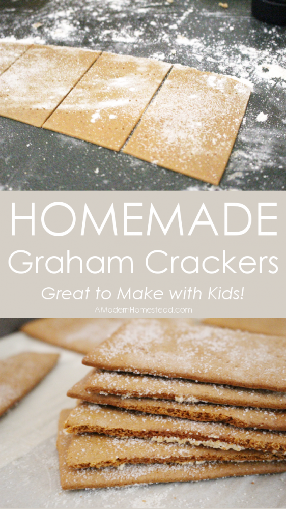 These homemade graham crackers are an easy and fun project to make with kids! The dough comes together very easily, and can be rolled out by even the tiniest hands!