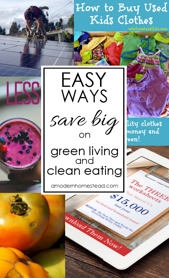 Save Money On Living Green