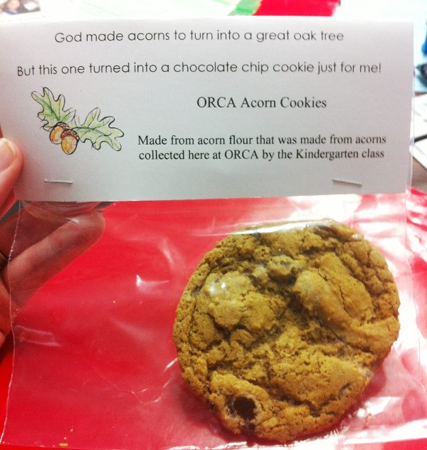 Acorn Flour chocolate chip cookie in a bag.