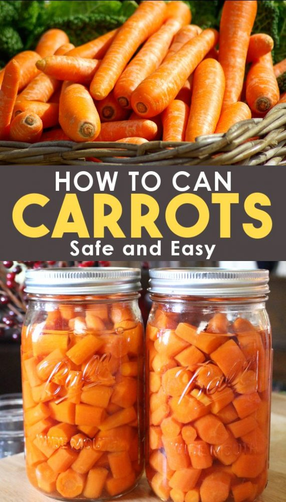 How to can carrots promo photo