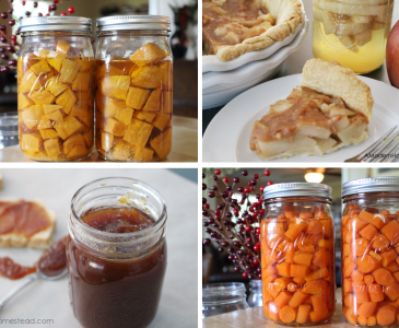 Fall Canning Collection