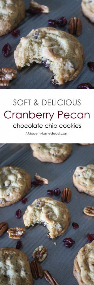 Enjoy some of the best flavors of fall with this soft and delicious cranberry pecan chocolate chip cookie! Bake them right away, or freeze the dough for later! The perfect blend of sweet chocolate, tart cranberries, and nutty pecans, these cookies will disappear as fast as you can bake them!