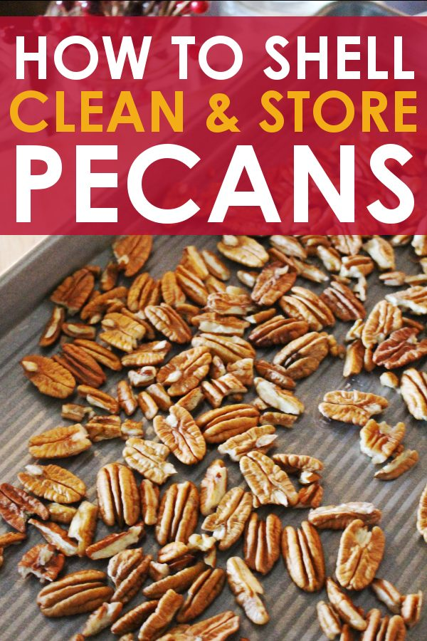How to shell pecans
