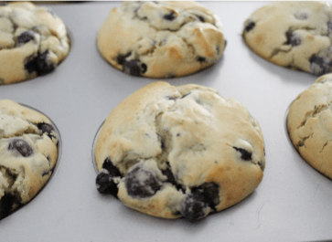 Einkorn Blueberry Muffins