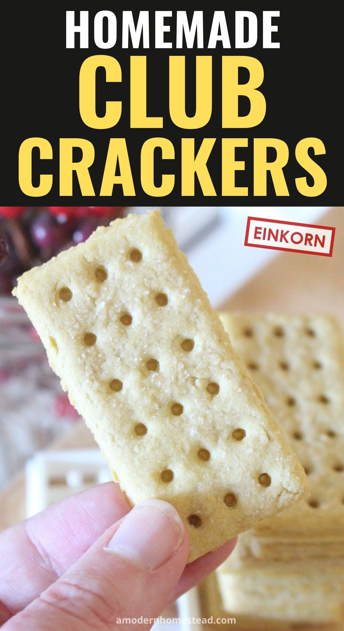 Homemade einkorn club crackers close up