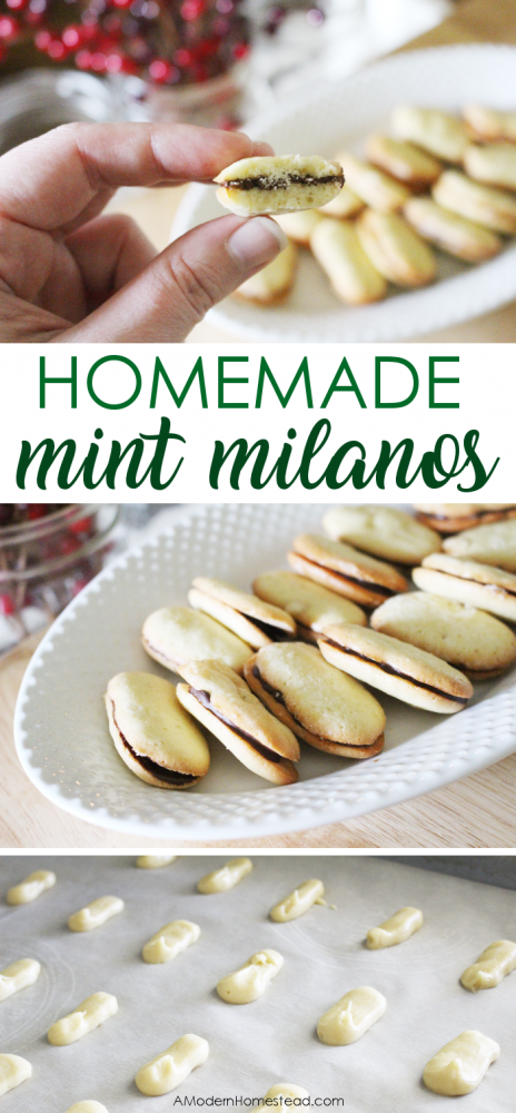 This mint milano cookies recipe creates a light, crisp, and buttery cookie, filled with a thin layer of peppermint infused dark chocolate. Easy and fast to make, these homemade mint milanos will save your from every buying another bag from the store!