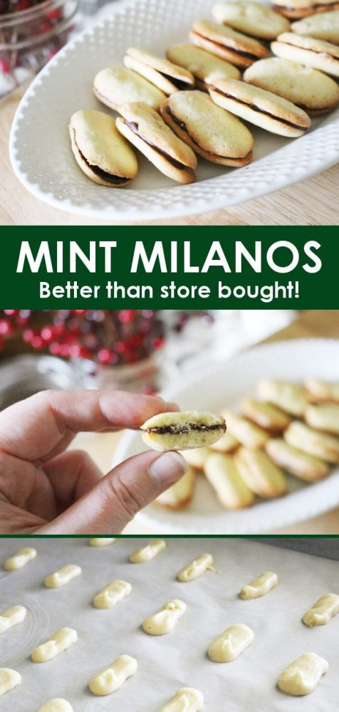 mint milano cookies recipe