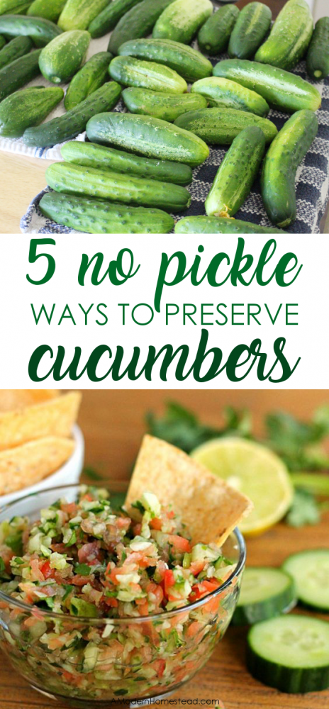 cucumbers rapidly produce in most gardens for months every summer check out how to store - How To Freeze Cucumbers