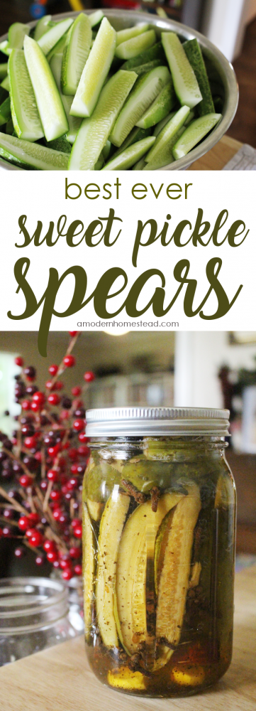 Wondering how to make crispy, rich, and delicious sweet pickles for canning? This recipe was an instant winner for us and I bet that once you taste it, you'll be adding this sweet pickle recipe to your personal collection too!