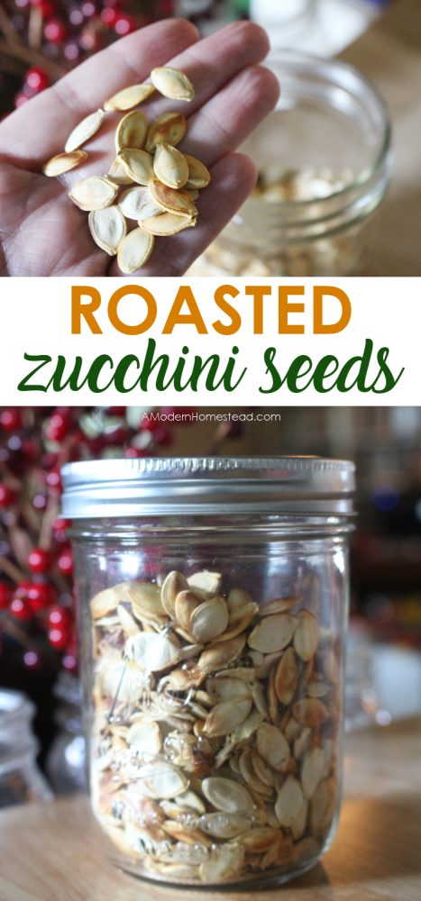 Have you ever had a huge zucchini that you didn't know quite what to do with? Roasted zucchini seeds are the delicious answer!!