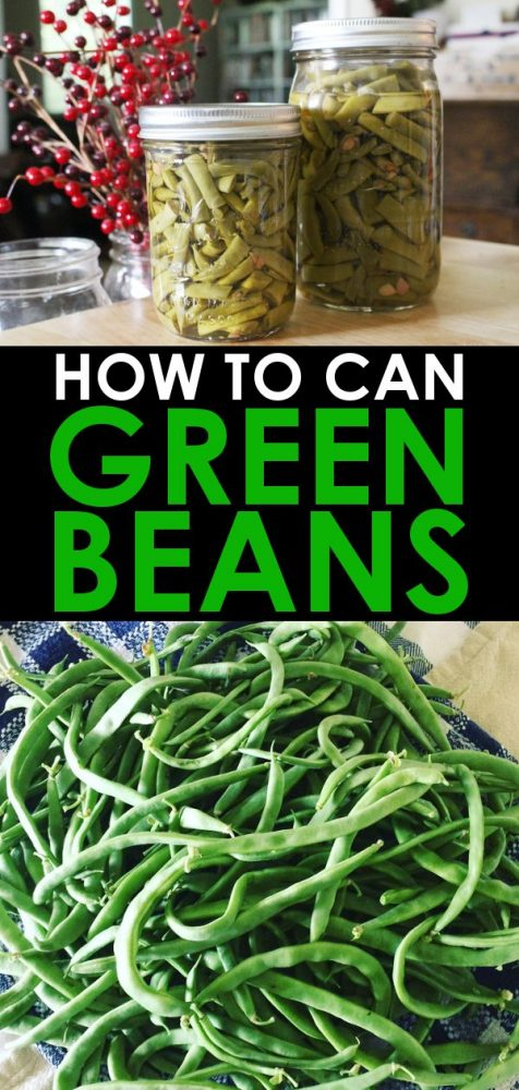 home canned green beans in canning jars