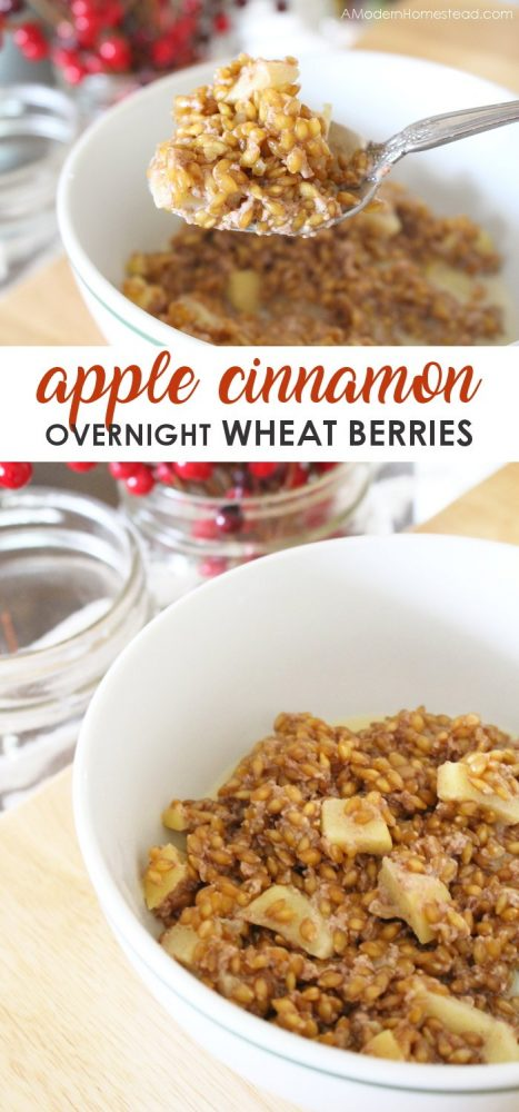 Einkorn overnight wheat berries are a great way to start the day with some soaked whole grains, and the apple cinnamon flavor is simply amazing! They can be eaten cold like cereal, or boiled for more of an oatmeal experience. Either way, you can't go wrong with these overnight wheat berries!