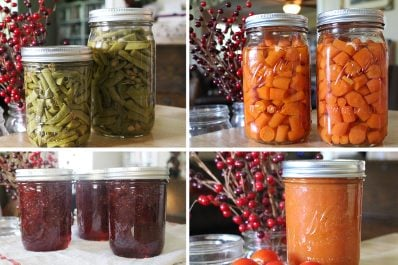 Summer Vegetables – Canning Recipes Collection