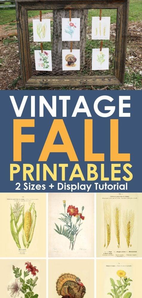 Vintage fall printables