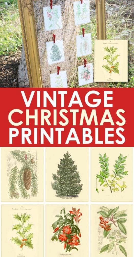 6 Vintage Christmas Printable Images Free Christmas Decor