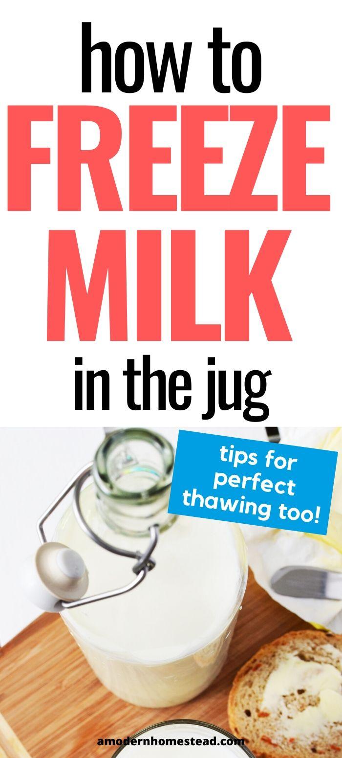 how to freeze milk promo image