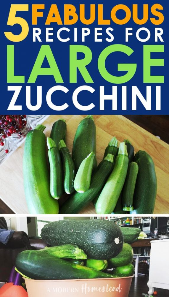 what to do with large zucchini