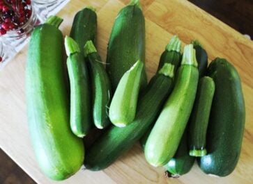 5 Amazing Recipes for Large Zucchini