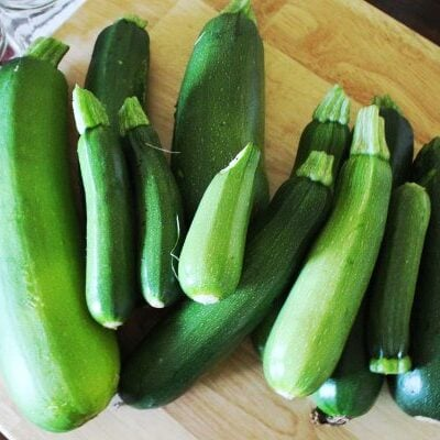 recipes for giant zucchini