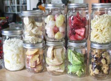 Home Freeze Dried Foods