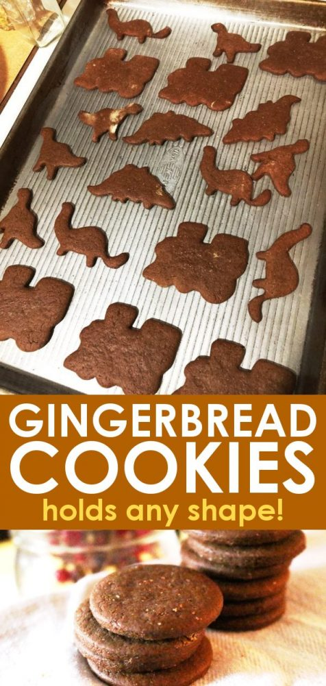 Gingerbread cookies in train and dinosaur shapes