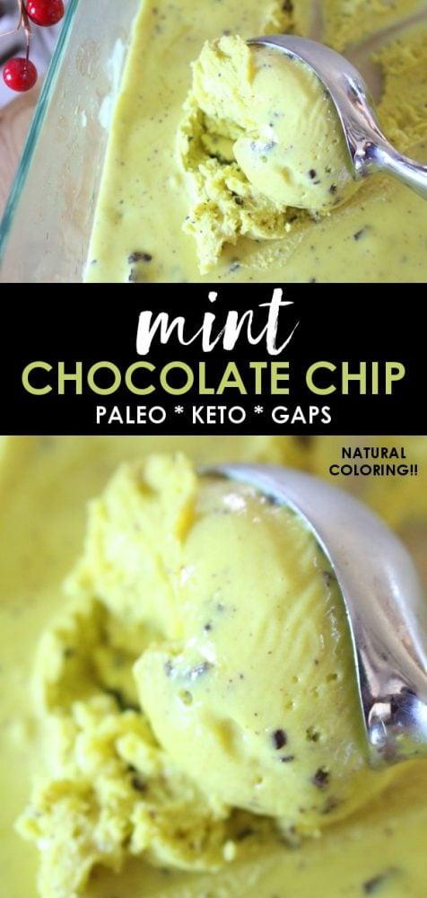 Easy Mint Chocolate Chip Ice Cream Recipe Paleo Keto Gaps
