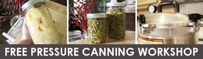 free pressure canning workshop banner ad