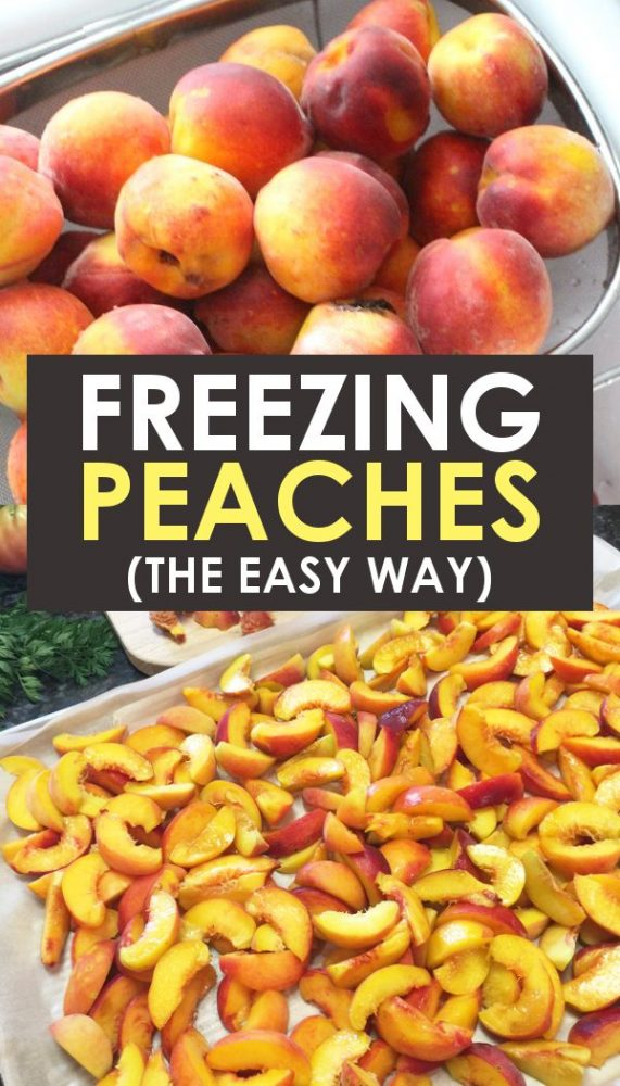 Fresh peaches before and after freezing