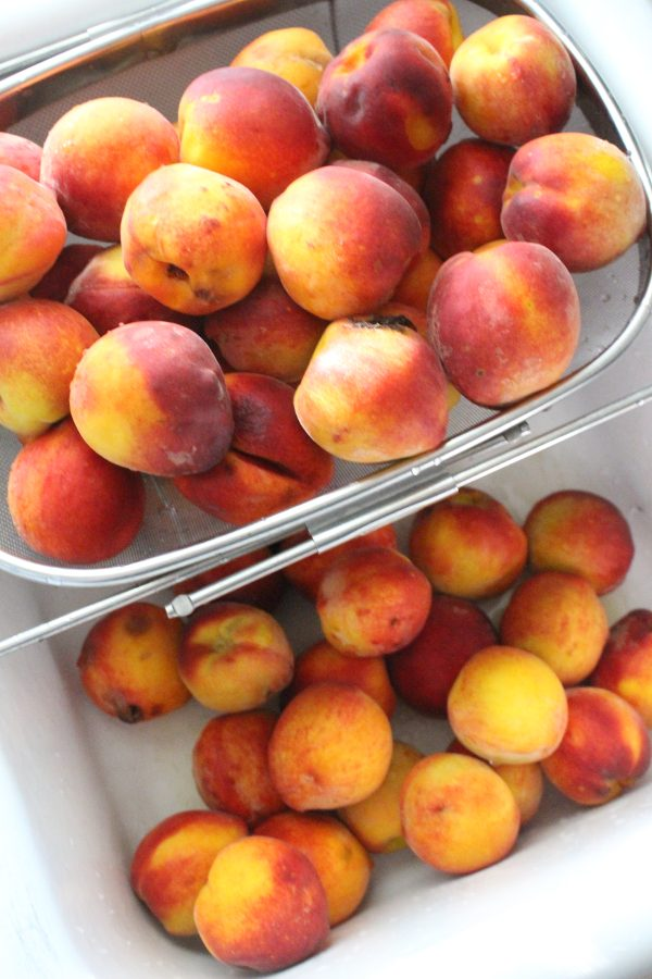 Fresh peaches in sink ready to wash