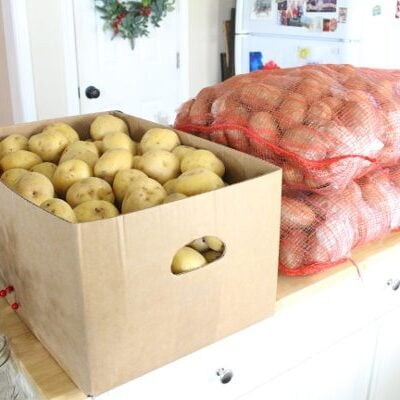 150 pounds of fresh russet and yukon gold potatoes ready to store