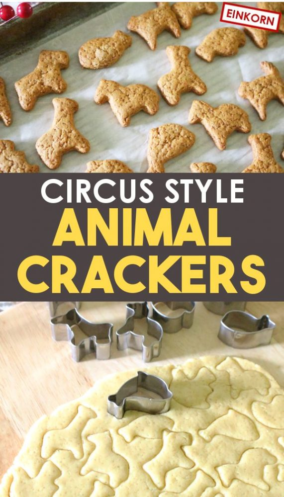 homemade animal cracker cookies