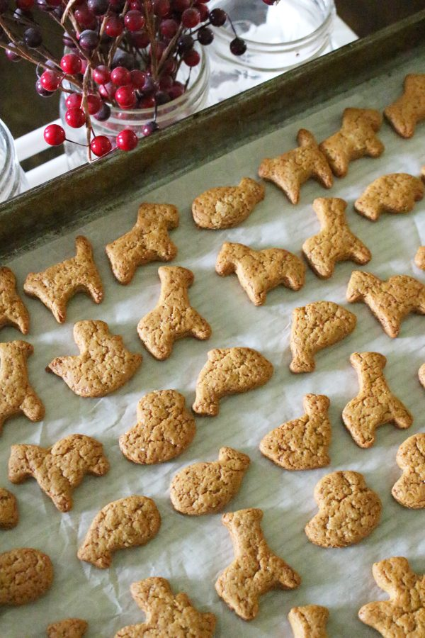 Homemade animal cracker cookies finished on baking tray