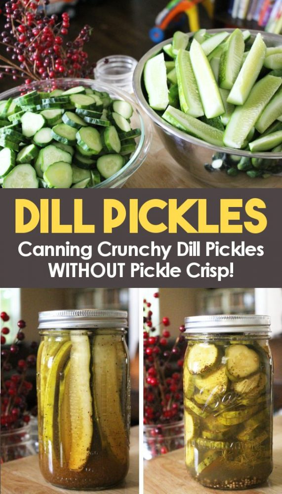 how to can dill pickles in slices or spears