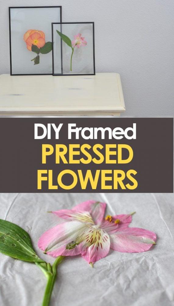 Framed pressed flowers pinnable image