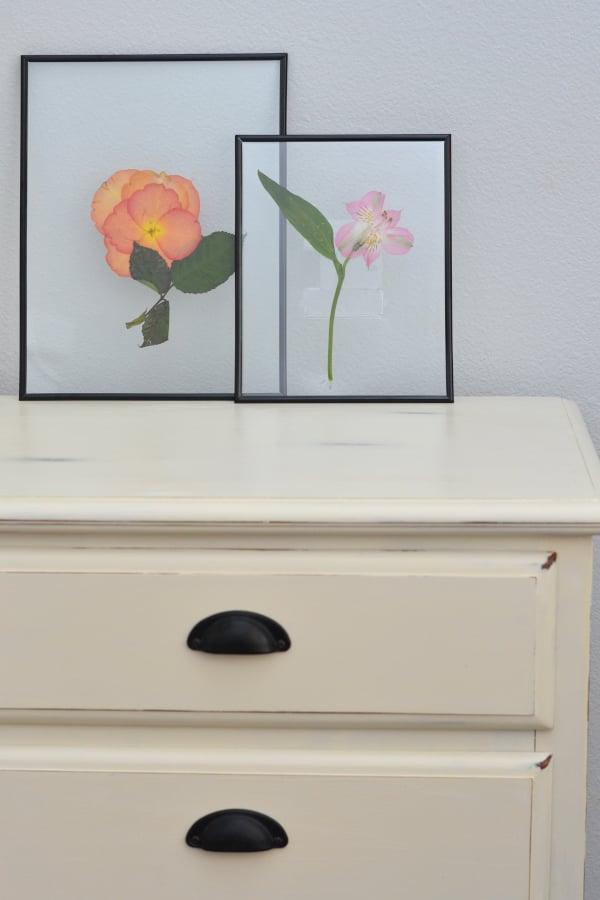 framed pressed flowers on a white dresser