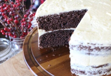 homemade chocolate cake with sourdough starter
